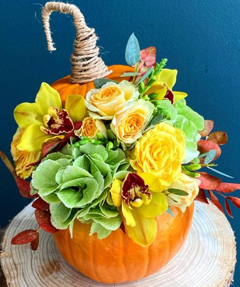 Bostan portocaliu -mix flori